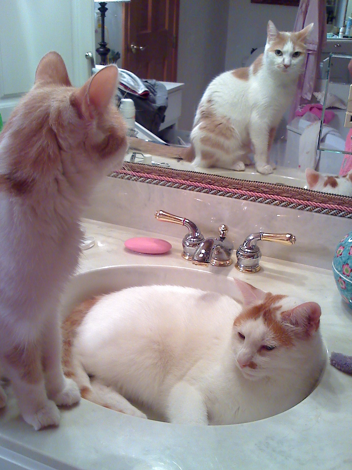 Maggie in mirror; Marcus in sink