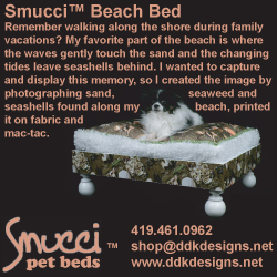 250_Smucci_beach_revision